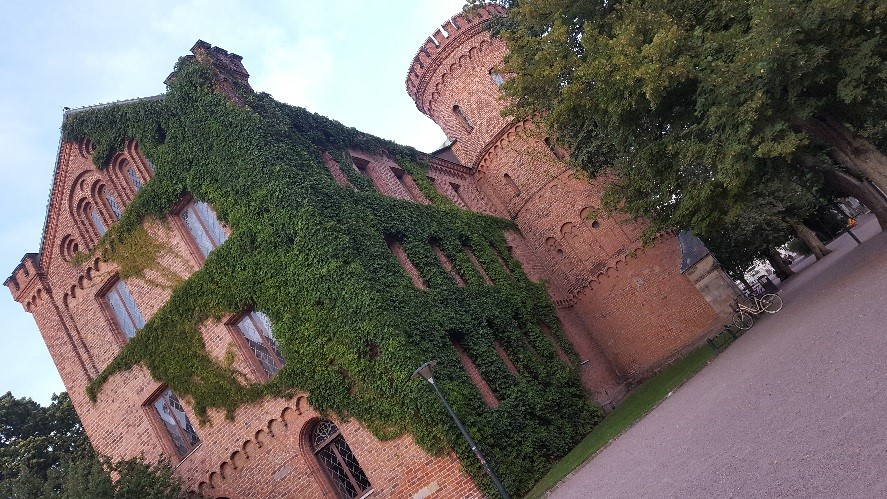An ivy covered building in Lund