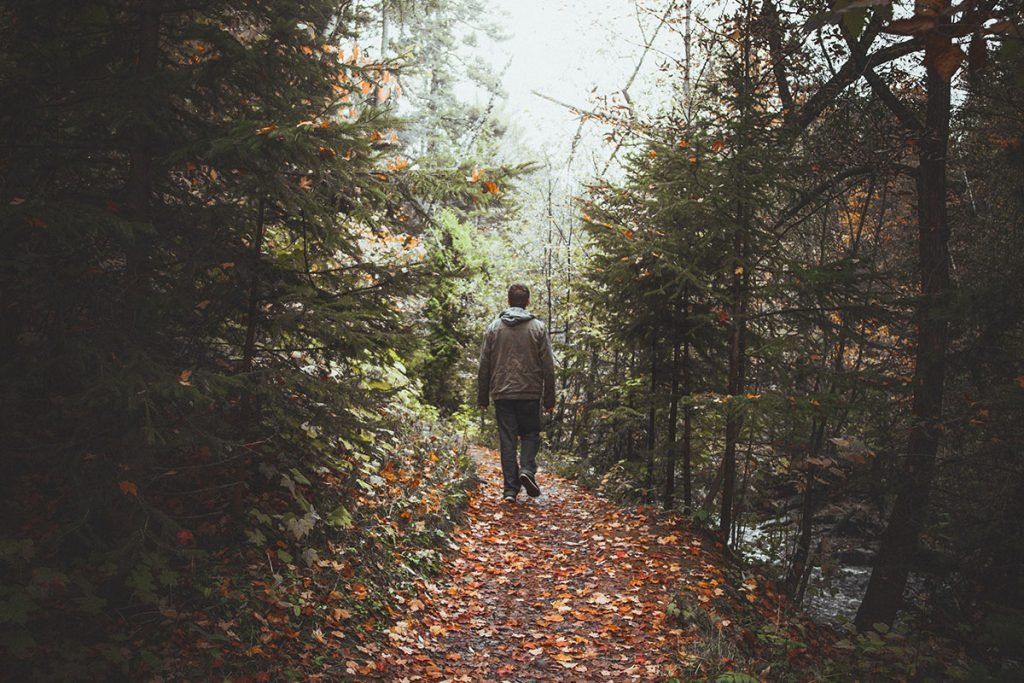 Image of man walking in the woods alongside a river